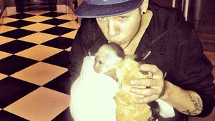 Justin Bieber egy újabb majomra vágyik