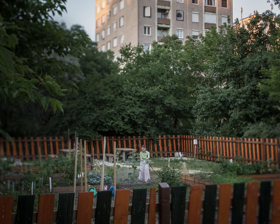Kőrakás parki kert