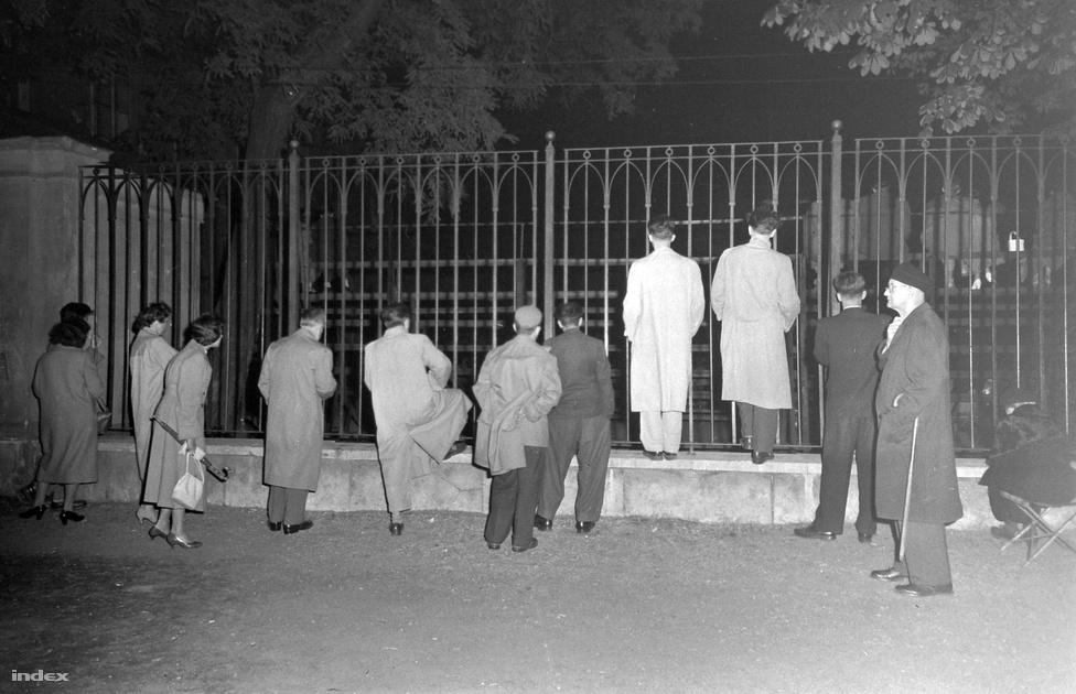 Ez viszont már kőkeményen az ötvenes évek: a Károlyi kert kerítésénél hallgatóznak mindazok, akiknek nem sikerült bejutni a koncertre.
