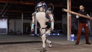 Simán feltápászkodik már a Google robotja, ha felrúgják