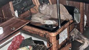 Búcsúlevelet írt feleségének a szellemhajón talált német múmia