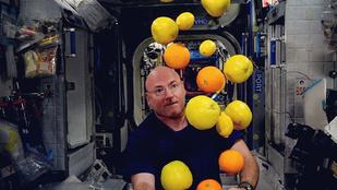 16 ragyogó kép: Egy év után végre visszatért az űrből