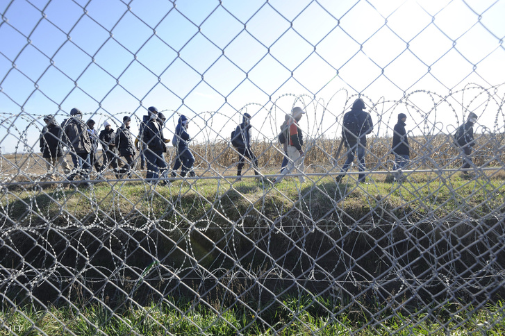 Migránsok a vajdasági oldalon a magyar-szerb határon felállított ideiglenes határzárnál Mórahalom térségében 2016. február 22-én