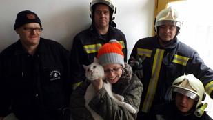 Ez a macska elég hálás lehet a dunaújvárosi tűzoltóknak