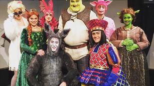 Tóth Gabi is szerepelni fog a Shrek musicalben