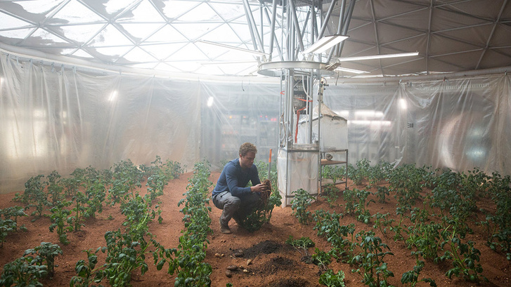 Matt Damon krumplit termeszt a Marson a filmben