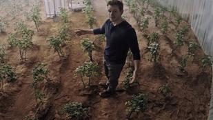 Igazi tudósok is megcsinálták azt, amit Matt Damon a Mentőexpedícióban