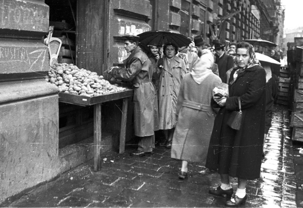 Zöldséges a Bihari János utcában. Békés sorbanállással krumpliért egy esős november eleji napon.