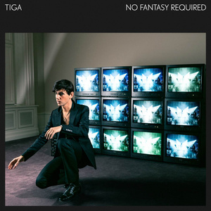 tiga no fantasy required-portada
