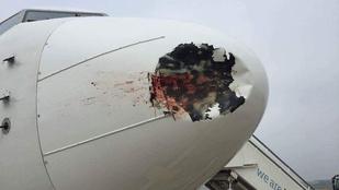 Ez történik, ha egy utasszállító egy madárral ütközik