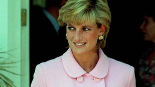 Vilmos és Harry herceg emlékkertet készítene Diana hercegnének