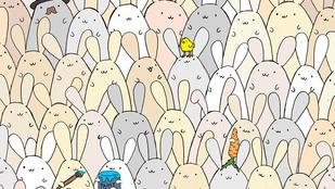 Mennyi idő alatt találja meg a tojást a képen?