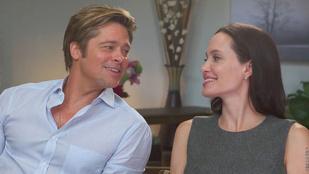 Nem sokon múlt, hogy Brad Pitt spermadonor legyen