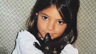 Na, melyik celeb gyerekkori képét látja?