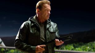 Arnold Schwarzenegger büszkén mutatja a falat, amit ő épített