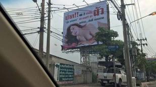 Egy 45 éves szűz nő óriásplakáttal akar magának férjet fogni