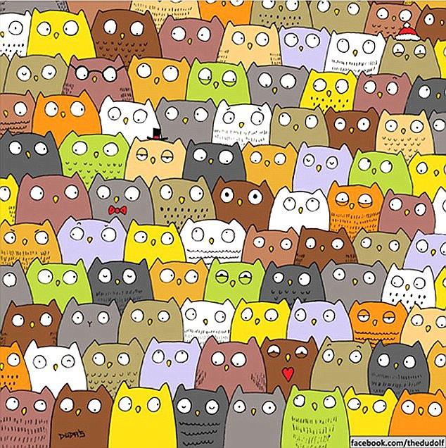 Panda után lehetett macskát keresni a baglyok közt.