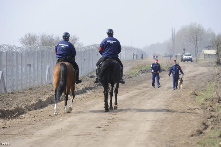 Lovas és kutyás rendõrök járõröznek a szerb-magyar határnál.