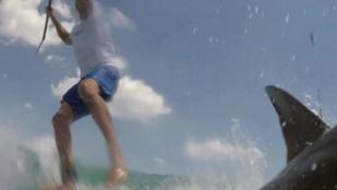 Cápával karambolozott a paddleboardos