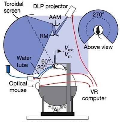 vr mouse setup