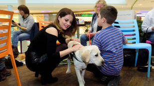 Napi cuki: ilyen amikor magyar celebek vakvezető kutyákkal barátkoznak
