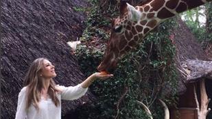 Liz Hurley legújabb barátja egy zsiráf