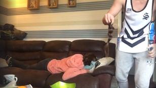 Humor: levágta alvó barátnője haját