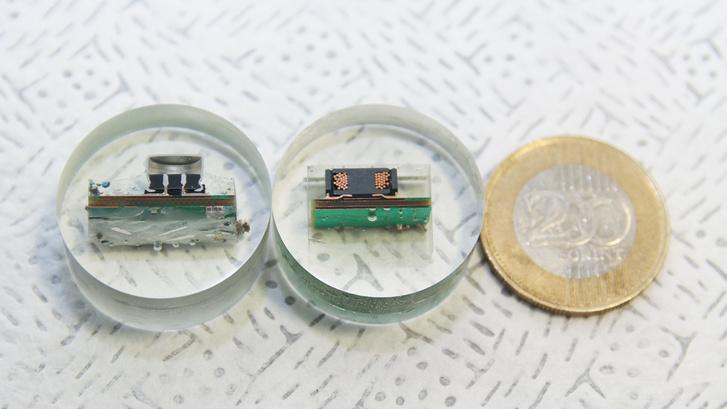 Egy elektrolit-kondenzátor és egy tekercs metszete