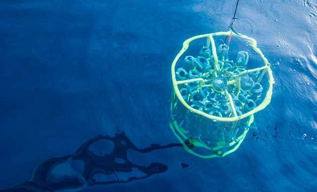 A kutatások szerint a mikroszkopikus tengeri életnek nagy szerepe van az éghajlat-szabályozásban. Egy rozetta merül a vízbe mintákat gyűjteni a Pelagibacterales csoportba tartozó SAR11 baktériumról.