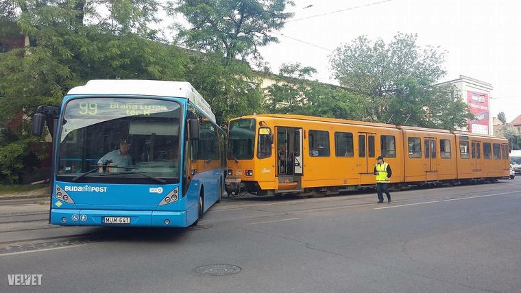 IMG 3232