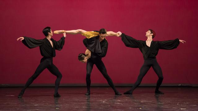 balettweb 141