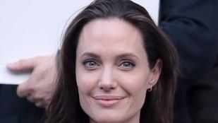 Angelina Jolie egyetemi tanár lesz