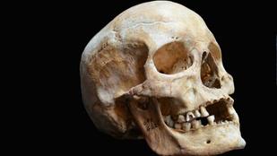 Csontvázak kerültek elő a József Nádor téren