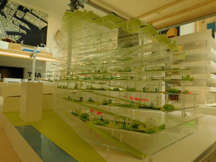 Zöld iskola dán módra