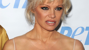 Tuti, hogy nem ezek Pamela Anderson legelőnyösebb fotói
