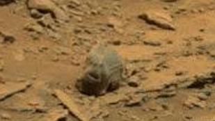 Ön elhiszi, hogy valódi a Marson talált földönkívüli koponya?