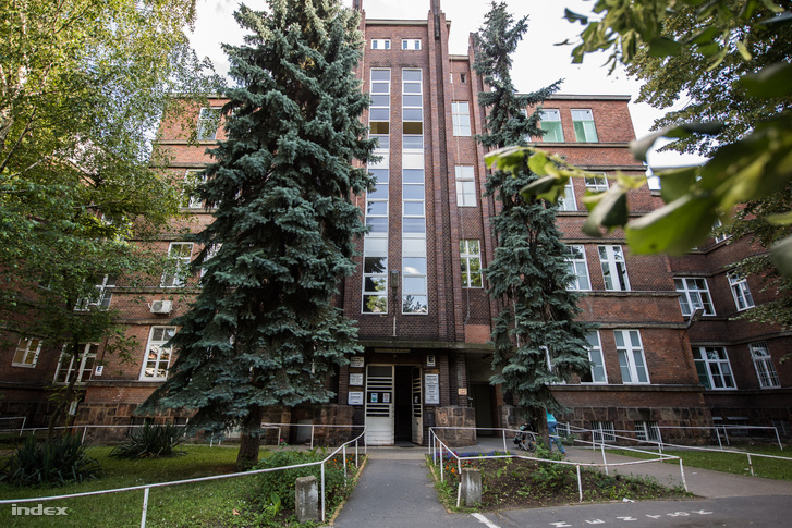A Bajcsy-Zsilinszki Kórház III-as belgyógyászatán sem foglalkoztak a törésekkel