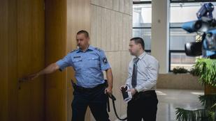 Jogerősen kilenc év börtönre ítélték a gólyatábori erőszakolót