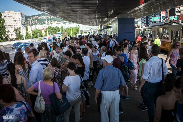 A várakozó tömeg a Szentlélek térnél.