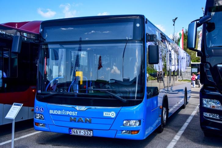 Budapesten már több mint száz szóló MAN busz közlekedik. Jöhetnek a csuklósok is?