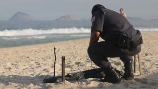 Emberi testrészeket mosott partra a víz a riói olimpia helyszínén