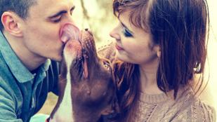 3 ok, amiért a kutyásoknak jobb a párkapcsolata