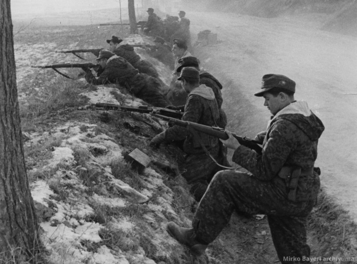 A Wiking hadosztály katonái Magyarországon 1945 januárjában