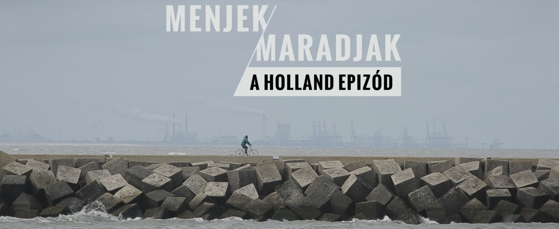 mm holland 01