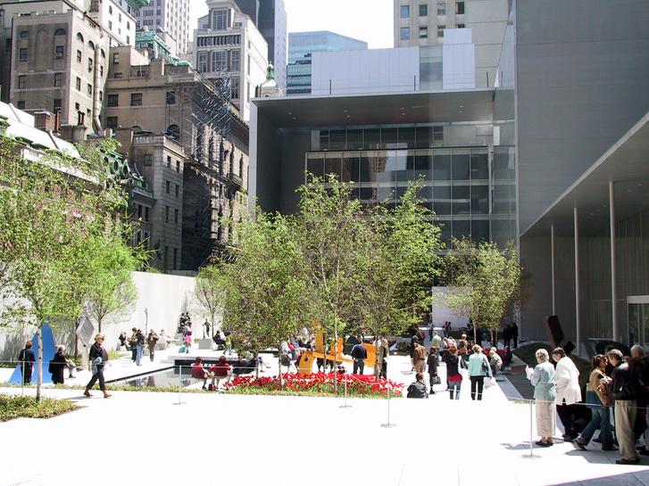 Modern Művészetek Múzeuma, New York