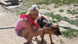Mekkora ötlet: lánybúcsú volt a pomázi kutyamenhelyen!