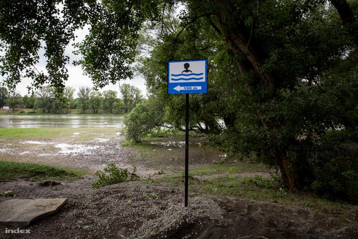 A szabadstrand területe, néhány száz méterrel lejjebb attól a helytől, ahol a szennyvizet engedték a Dunába