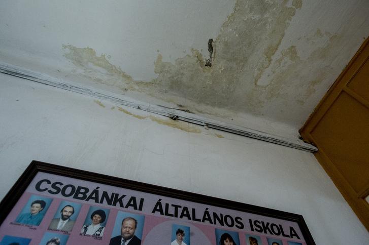 Beázás miatt penészedő falak az iskola folyosóján