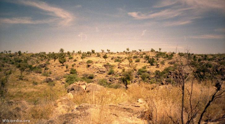Riversleigh, Queensland állam északnyugati részén, ahol a maradványokat találták