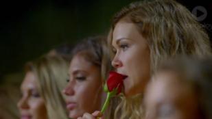 Ön harapott már rá rózsára izgalmában? Mert ő igen.